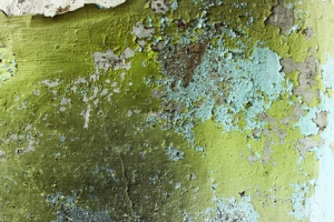 green grunge home background